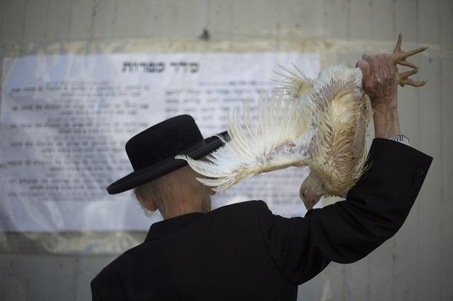 EBE 77 Bnei Brak - Ultraortodoxný Žid drží v ruke kurèa, ktoré zabije poèas tradièného náboženského rituálu Kaparot v Bnei Braku neïaleko Tel Avivu v stredu 11. septembra 2013. Židia veria, že poèas tohto rituálu sa všetky minulé hriechy prenesú do kurèaa, ktoré bude rituálne zabité a s ním zaniknú aj ich hriechy. Rituál vykonávajú Židia deò pred ve¾kým židovským sviatkom zmierenia (Jom Kippur), ktorý sa zaène v piatok poèas západu slnka. FOTO TASR/AP An Ultra-Orthodox Jewish man swings a chicken over his head as part of the Kaparot ritual in the Ultra-Orthodox city of Bnei Brak near Tel Aviv, Israel,Wednesday, Sept. 11, 2013. Observers believe the ritual transfers one's sins from the past year into the chicken, and is performed before the Day of Atonement, Yom Kippur, the holiest day in the Jewish year which starts at sundown Friday. (AP Photo/Ariel Schalit)